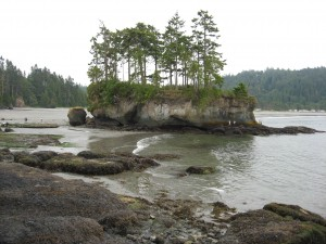 Island at Salt Creek Campground